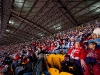 Upper Deck Hockey Fans