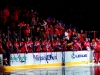 Capitals Bench Celebrate Knuble's 1,000th Game