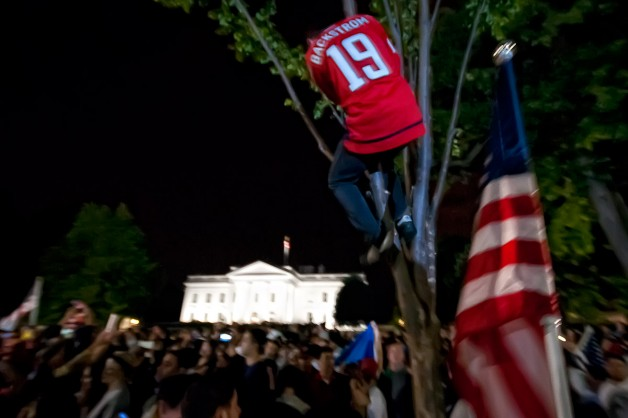 Capitals Fan Climbs Down From Tree In Front of White House